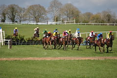 Corsa di cavalli irlandese Fotografie Stock Libere da Diritti