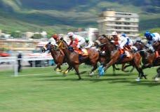Corsa di cavalli in Isola Maurizio Immagini Stock Libere da Diritti