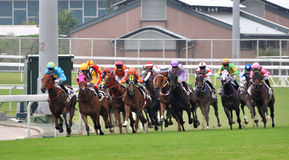 Corsa di cavalli nel club di puleggia tenditrice di Hong Kong Immagini Stock