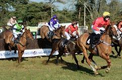 Corsa di cavalli sopra i salti fotografia stock libera da diritti