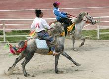 Corsa di cavalli tibetana Fotografia Stock Libera da Diritti