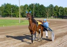 Corsa di cavallo fotografia stock libera da diritti
