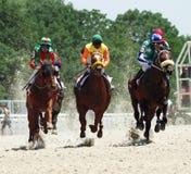 Corsa di cavallo. Immagini Stock Libere da Diritti