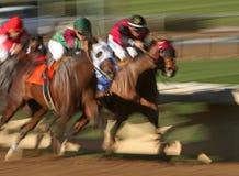 Corsa di cavallo astratta della sfuocatura Immagini Stock