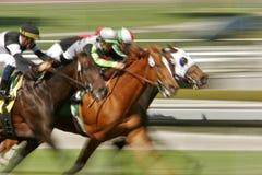 Corsa di cavallo astratta della sfuocatura immagine stock libera da diritti