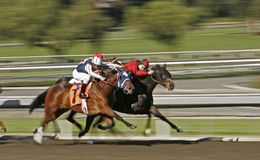 Corsa di cavallo astratta della sfuocatura di movimento c Immagine Stock