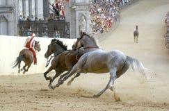 Corsa di cavallo di palio di Siena Immagine Stock