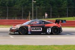 Corsa di Hawk Performance Fotografie Stock Libere da Diritti