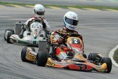 Corsa di Kart Immagine Stock