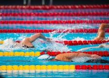 Corsa di nuoto di Frestyle Fotografia Stock Libera da Diritti