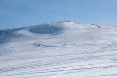 Corsa di Sleddog in alpi. Continuamente in salita Immagini Stock Libere da Diritti