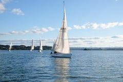 Corsa girante dell'yacht di inverno del club di Kerikeri immagine stock