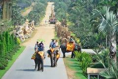 Corsa in Tailandia fotografia stock