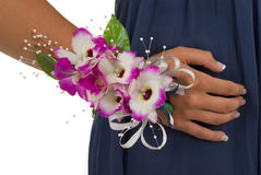 Corsage. Prom or wedding corsage on white background Stock Photography