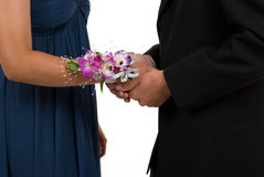 Corsage Royalty Free Stock Photography