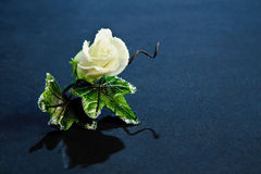 Corsage de Rose de sucre photographie stock libre de droits