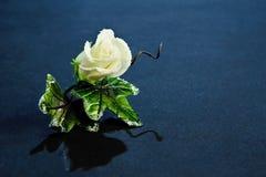 Corsage della Rosa dello zucchero Fotografia Stock Libera da Diritti
