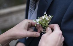 Corsage getting pinned on groom at wedding stock photography