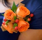 Corsage. Pinned on a dress royalty free stock image