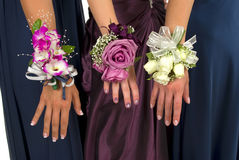Corsages Foto de Stock Royalty Free