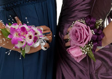 Corsages Royalty Free Stock Photos