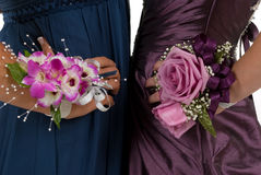 Corsages Royalty-vrije Stock Foto