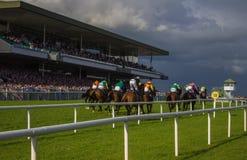 Corse di Galway - l'allungamento finale Immagine Stock