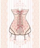 Corset Stock Photography