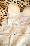 Corset and lace stock photography