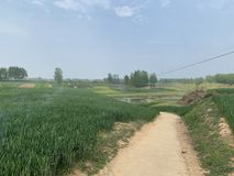 Corsi rurali e terreno coltivabile del fiume in Cina! immagine stock