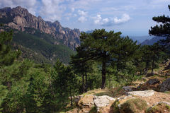 Corsica Bavella mountains Stock Photo