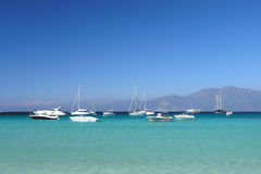 Corsica beach Stock Image