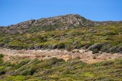 Corsica, Bonifacio, Śródziemnomorscy maquis, skały, góra, głąb lądu, wieś, zieleń, krajobraz, natura Obrazy Royalty Free