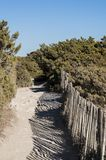 Corsica, Bonifacio, cieśnina Bonifacio, Śródziemnomorscy maquis, wapień, faleza, skały, Bouches De Bonifacio Zdjęcie Stock