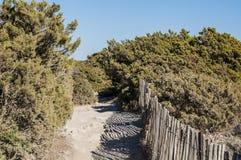 Corsica, Bonifacio, cieśnina Bonifacio, Śródziemnomorscy maquis, wapień, faleza, skały, Bouches De Bonifacio Fotografia Royalty Free