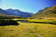 Corsica. Grass, green, mountain, water, Pozzi in corsica island Royalty Free Stock Photography