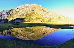 Corsica. Grass, green, mountain, water, Pozzi on corsica island Stock Image