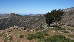 Corsica hiking Stock Image