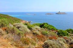 Corsica landscape (Haute-Corse) Stock Images