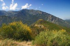 Corsica Landscape Stock Image