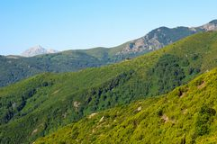 Corsica mountains Royalty Free Stock Photos