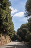 Corsica, nakrętka Corse, Śródziemnomorscy maquis na drodze, jeżdżenie, wijąca droga Zdjęcie Stock