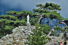 Corsica-pas Col. de Bavella royalty-vrije stock fotografie