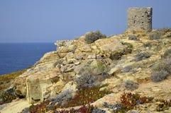 Corsicaanse landschap en toren stock foto's