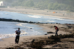 Corsican beach cleaning Royalty Free Stock Images
