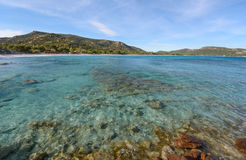 Corsican beach near Punta di Colombara Stock Photography