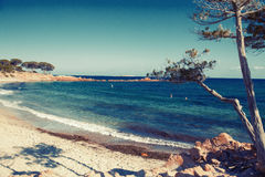 Corsican Beach in Spring Royalty Free Stock Photo