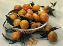 Corsican clementines Stock Photography