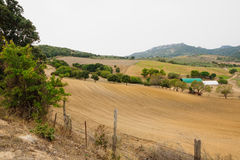Corsican country side Royalty Free Stock Photography
