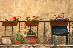 Corsican houses and buildings Stock Image
